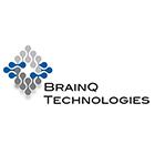 brainq-ver2
